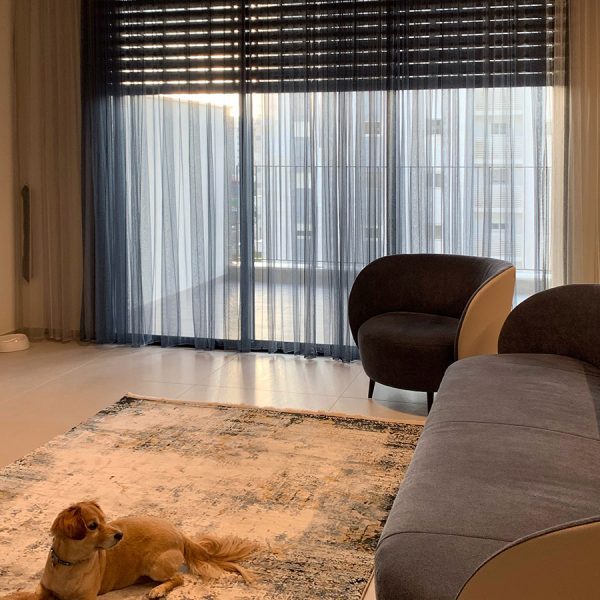 שטיח בסלון מודרני